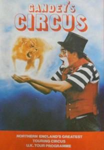 Dingle Fingle Circus Clown